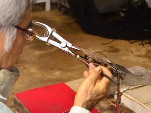 琉球真珠 シロチョウガイ挿核作業